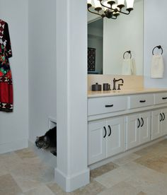 Maybe a concealed kitty litter box area in the mudroom/laundry space underneath a folding table/supplies storage?