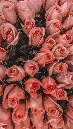 Purple Flowers Wallpaper, Sunflower Wallpaper, Flower Phone Wallpaper, Iphone Wallpaper, Beautiful Bouquet Of Flowers, Flowers Nature, Beautiful Roses, Beautiful Flowers, Raw Pictures