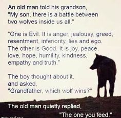 Feed the right Wolf #inspire #quotes