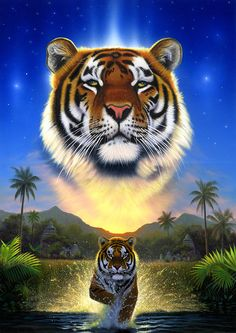 Tiger Of The Lake by Chris Heitt - Tiger Of The Lake Photograph - Tiger Of The Lake Fine Art Prints and Posters for Sale Tiger Wallpaper, Animal Wallpaper, Big Cats Art, Cat Art, Tiger Pictures, Animal Pictures, Beautiful Cats, Animals Beautiful, Animals And Pets