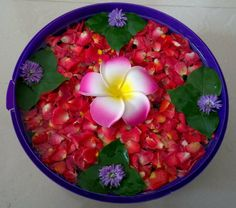 Wedding Design Decoration Vases For 2019 Rangoli Designs Flower, Rangoli Ideas, Flower Rangoli, Flower Designs, Kolam Designs, Outside Christmas Decorations, Diy Diwali Decorations, Festival Decorations, Flower Decorations