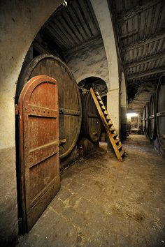 Wine Cellar, Abazzia di Torri - Tuscany, Italy, province of Siena