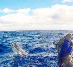"""""""I propose that it only matters that you attempt to catch a fish. Doing so brings you close to nature.""""  https://www.coastalfishing.com/collections/all-products?utm_content=bufferc9cc6&utm_medium=social&utm_source=twitter.com&utm_campaign=buffer  #saltwaterfishing #deepseafishing #angling #offshore #fishing #lovetofish Image courtesy by pro team member @tunasindabox"""