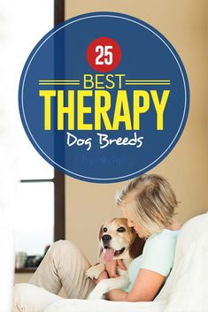 There are many reasons that a person may want a therapy dog. This BEST therapy dog breeds list has most popular therapy dogs for physical and mental health. Best Small Dog Breeds, Dog Breeds That Dont Shed, Service Dogs Breeds, Dog Breeds List, Therapy Dog Training, Therapy Dogs, Training Tips, Emotional Support Animal, Diabetic Dog