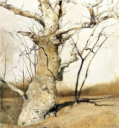 Sycamore – Andrew Wyeth 1982 - love this painting. Jamie Wyeth, Art Watercolor, Watercolor Landscape, Landscape Art, Landscape Paintings, Tree Paintings, Andrew Wyeth Paintings, Andrew Wyeth Art, Nc Wyeth