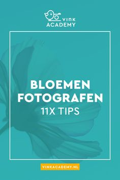 Bloemen fotograferen: 11 tips • Vink Academy Cool Photoshop, Photoshop Tutorial, Photoshop Actions, Photography Lessons, Photoshop Photography, Love Photography, Repeating Patterns, Video Editing, Natural Light