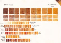 Watercolour mixing chart - Quinacridone Gold + Burnt Umber, white, Raw Sienna, Burnt Sienna, Quinacridone Sienna, Cadmium Yellow Deep and Indian Red.