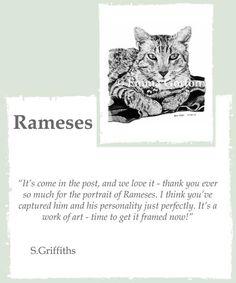 Testimonial for Rameses the Egyptian Mau - Pet Portrait Testimonials