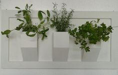 wall planters q15 www.spazio7.co.uk