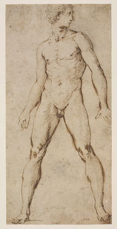 Drawing | Raphael | V Search the Collections