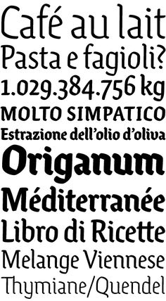 Ode typeface: http://www.martinplusfonts.com/ode/index.html