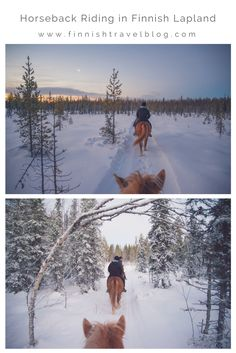 Want to experience horseback riding in Winter Wonderland? Such an awesome way to explore nature.