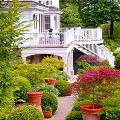 Pots of Japanese maples, which require wintering in a cold room during the New Hampshire winters, line a gravel path to the rear of the house, accented by boxwoods clipped into globes.