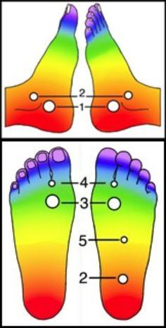 A láb energiapontjainak kezelése indiai akupresszúrával A pontok és (terápiájuk) ismeretében irányítható a prána valamennyi formája, amely a test minden struktúráját (a szervrendszerektől a D