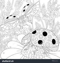 Zentangle stylized cartoon flying ladybugs and daisy flowers. Hand drawn sketch for adult anti stress coloring page, T-shirt emblem, logo or tattoo with doodle, zentangle, floral design elements.