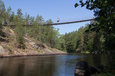 #Hiking in #Repovesi National Park #Finland - HikeVentures