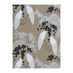 Harlequin Lovebirds Wallpaper, Charcoal, 60124