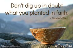 To pray big, we must daily uproot doubt and stay planted in faith. (#PrayBig for 31 Days / Day 2)