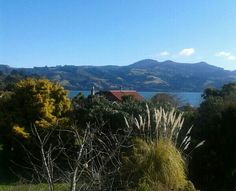 Dunedin, Broad Bay