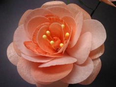 Wafer Paper Rose. Learn more by contacting Ro!