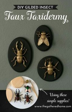 DIY Gilded Insect Faux Taxidermy These GIANT gilded insect art pieces are such a crazy, glam addi Holidays Halloween, Halloween Crafts, Halloween Party, Diy Halloween Decorations, Living Room Halloween Decor, Halloween Bedroom, Halloween Flowers, Dollar Store Halloween, Halloween Table