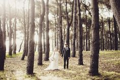 Another example of interesting composition from Jonas Peterson Photography Wedding Spot, Sydney Wedding, Centennial Park, Byron Bay Weddings, Wedding Photography Inspiration, Here Comes The Bride, Wedding Photos, Plants, Pictures