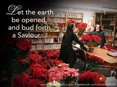 """""""Let the earth be opened and bud forth a Savior…"""" ©Sisters, Slaves of the Immaculate Heart of Mary. Saint Benedict Center, Still River MA. www.saintbenedict... facebook.com/SistersMICM"""