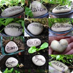Rock Garden Markers: God knows we have enough rocks, now if I can only keep little hands from moving them!  Or maybe that should be a game for the kids to learn the plants. Now we're thinking!