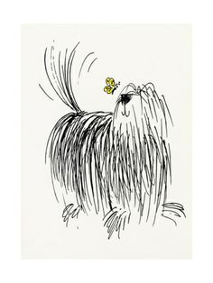 Shaggy Dog with Butterfly Print at Art.com