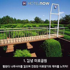 '제주도'에서 꼭 가봐야할 곳 BEST 10! Garden Bridge, Outdoor Structures, Travel, Viajes, Destinations, Traveling, Trips