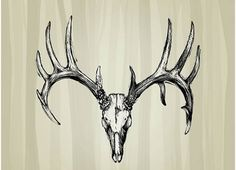 Dear Skull | Another deer skull tattoo with a definite gothic edge, this deer skull ...