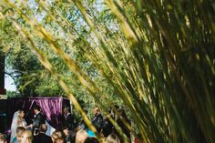 Outdoor, Downtown St. Pete Wedding Ceremony Venue NOVA 535 | St. Petersburg Wedding Planner Exquisite Events