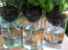 Zavlažovací květináč z petky