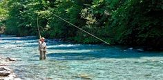 Club Fish World. Fly fishing adventures in Slovenia