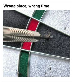 #1. Incredible once in a lifetime shot: Mosquito killed by a dart.Reddit#2. Awesome hang-out ideas with your friends on the beach.#3. If you're boring because your car is stuck in the drive-thru line.#4. A horrible image when your plane is ready for landing.reddit#5. A...