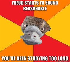 The Adventures of Psychology Student Platypus hahaha sooo true!!!