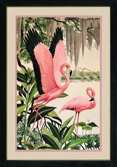Vintage Flamingo Art - Pink, green, and black trim. Nursery room inspiration.