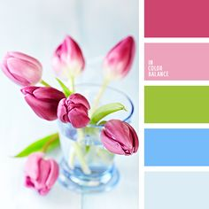 azul claro fuerte, celeste vivo, color de los tallos, color tulipa rosada, color verde hierba, colores de la primavera, colores de las tulipas rosadas, combinación de colores para primavera precoz, matices de color rosado, paleta de colores para primavera, paleta primaveral, rosado fuerte, tonos