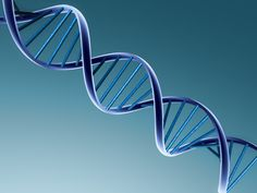 University of Miami - Online Genetics Courses