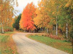 Postal de Kirsi, desde Finlandia: Kemijärvi (cerca del Círculo Polar Ártico).