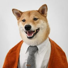 Have you ever seen a more dapper dog than this? Bodhi, or more popularly known as Menswear Dog, is a 4-year old shiba inu living the stylish life in New York City. He currently has an Indiegogo project underway, and if it's successful, we could see Menswear Dog's suits and bow ties on our not-so-stylish […]
