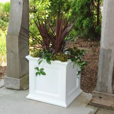 Have the look of wood without the upkeep with this high-grade polyethylene planter. Long-lasting beauty, durability and quality. Built-in water reservoir encourages healthy plant growth by allowing plants to practically water themselves. Tall Planters, Square Planters, White Planters, Planter Pots, Outdoor Planters, White Planter Boxes, Planter Ideas, Indoor Outdoor, Plastic Planter Boxes