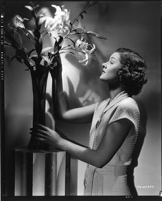 Myrna Loy camera negative by Clarence Sinclair Bull.