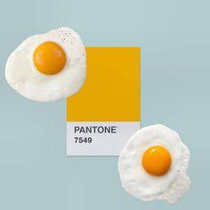 My daily Pantone