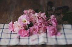 Of pink roses. by Caterina Gualtieri on 500px