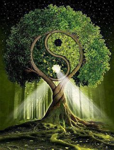 The tree of Yin-Yang symbolizes Life itself. It is the Ultimate Tree of Life. Mother Earth, Mother Nature, Buddha, Feng Shui, Magick, Fantasy Art, Fantasy Trees, Images, Long Sleeve