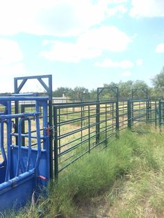 Alley using Big Country Cattle Panels.