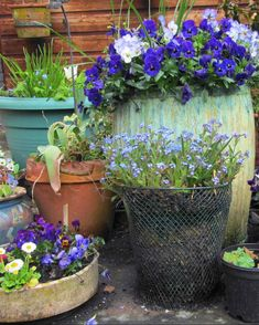 More pots, containers, and garden accessories are not always better, much like jewelry. #gardening #gardenideas #garden #gardenplants