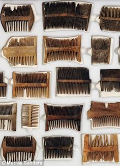 Nit combs recovered from the sunken wreck of the Tudor ship, the Mary Rose. Nits is the term for lice eggs a common problem among sailors in the middle ages. Tudor Era, Tudor Style, Tudor History, Uk History, Tudor Dynasty, Mary Queen Of Scots, Ancient Artifacts, 16th Century, Middle Ages