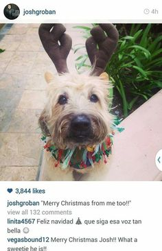Sweeny Groban wish Merry Christmas to his fans! Dec 23;2014
